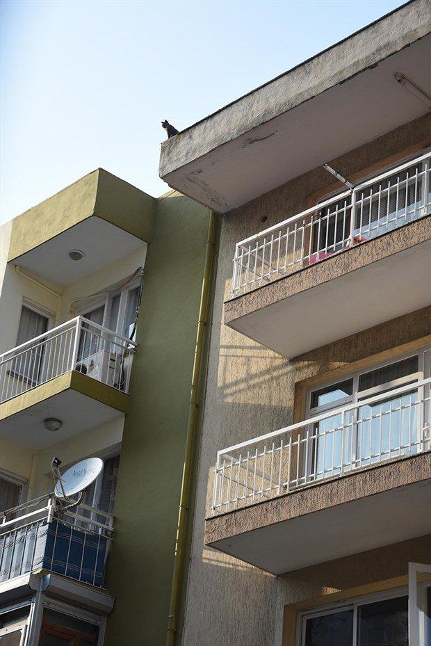 apartmanin-catisindaki-kedi-25-gunun-sonunda-kurtarildi-523299-1.