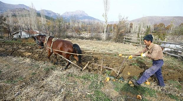 parasizlik-ciftciyi-kara-sabana-muhtac-birakti-535721-1.