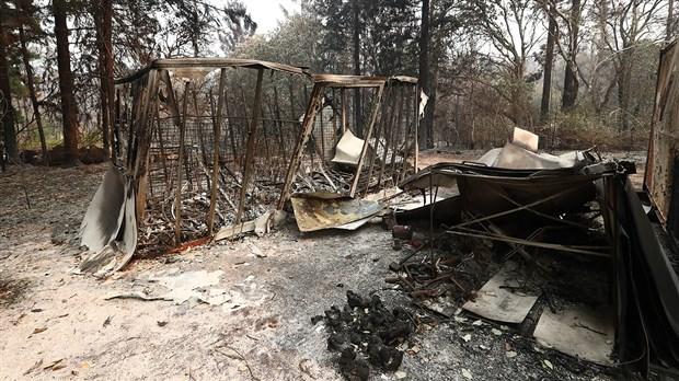 avustralya-da-orman-yanginlari-devam-ediyor-uc-eyalette-daha-alarm-verildi-651787-1.