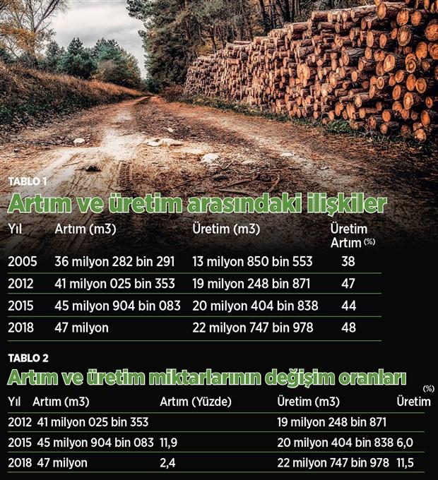 odun-uretiminde-asiri-artis-ormanlarimizi-tehdit-ediyor-703744-1.
