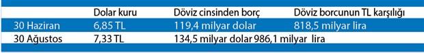 albayrak-doviz-borcunu-cok-sevdi-783971-1.