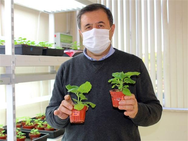 prof-dr-mammedov-gelistirdigimiz-asi-adaylari-koronavirusun-tum-mutasyonlarina-karsi-etkili-811093-1.