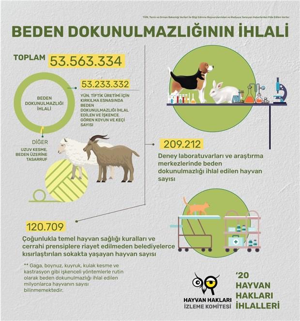 2020-de-en-az-1-milyar-hayvanin-yasam-hakki-gasp-edildi-862216-1.
