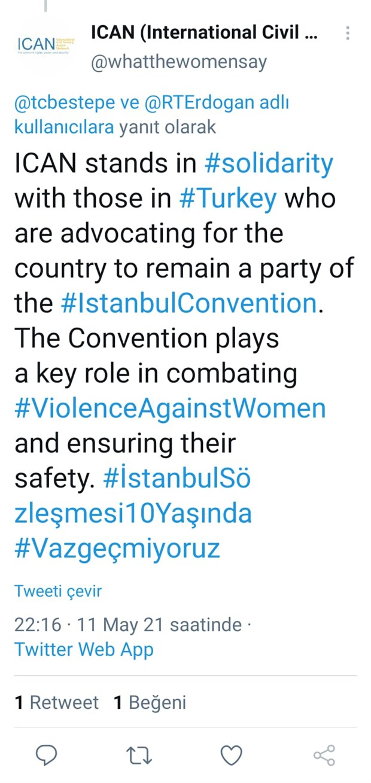 avrupa-yesiller-partisi-es-sozcusu-nden-turkiyeli-kadinlara-destek-istanbul-sozlesmesi-ni-dunya-sozlesmesi-yapacagiz-874825-1.