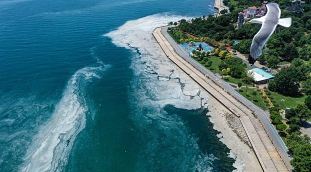 marmara-denizi-yuzeyinde-musilaj-temizligine-baslandi-bakan-dan-aciklama-yok-ten-toplanti-karari-884562-1.
