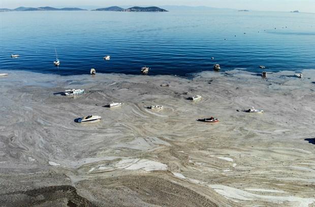 denizsalyasi-fenerbahce-sahili-ni-kapladi-884851-1.