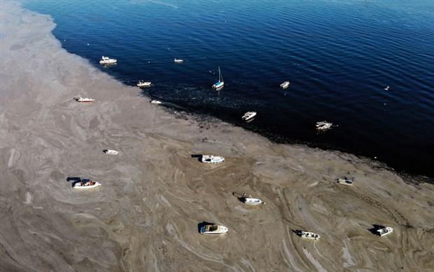 denizsalyasi-fenerbahce-sahili-ni-kapladi-884852-1.