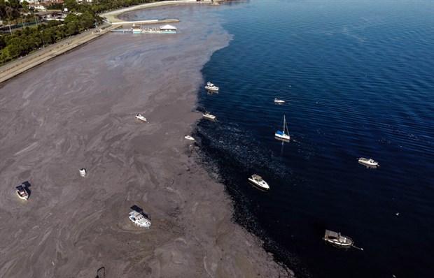 denizsalyasi-fenerbahce-sahili-ni-kapladi-884855-1.