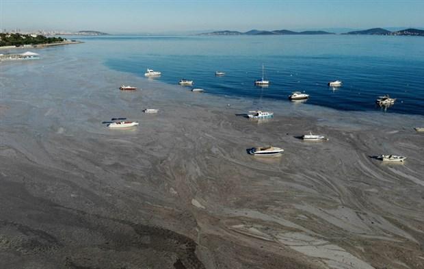 denizsalyasi-fenerbahce-sahili-ni-kapladi-884856-1.