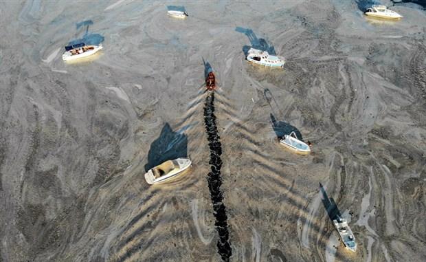 denizsalyasi-fenerbahce-sahili-ni-kapladi-884857-1.