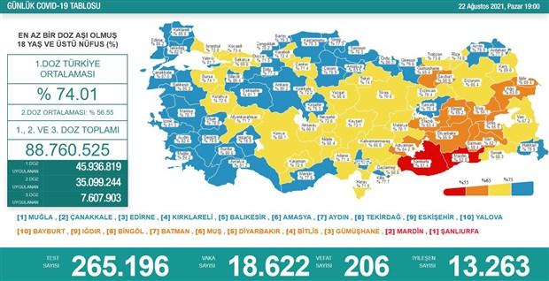 turkiye-de-son-24-saatte-206-kisi-daha-koronavirus-nedeniyle-yasamini-yitirdi-913180-1.