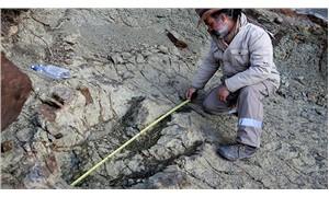 En büyük dinozor kalıntısı bulundu