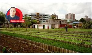 Tarımda Küba modeli