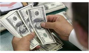 Dolar son iki haftanın en yüksek düzeyinde