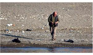 Balıkçılar avlarıyla beslenen yunusları öldürdü