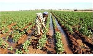 Çiftçi borçla yaşıyor