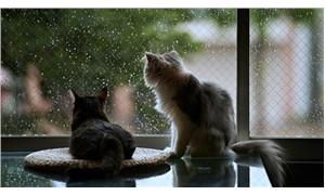 Ankara ve İstanbul için sağanak yağış uyarısı