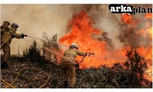 Binayı da ormanı da yakan kapitalizmin ateşi