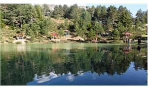 Orman ve Su İşleri Bakanı: Milli park ve tabiat parkları ücretsiz olacak