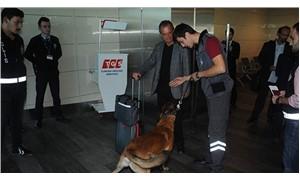 Havalimanında Avusturya yolcularına köpekli arama