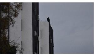 Belediye binasının en üst katında intihar girişimi