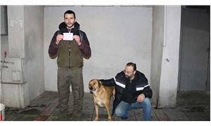 Sokak hayvanlarını beslediler diye cezalandırıldılar