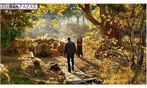 Ahlat Ağacı: Aydın' ın özeleştirisi olarak İdris