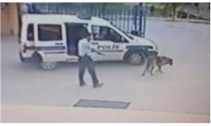 """Komiser Yardımcısı köpek vurdu, """"silahımı kontrol ediyordum"""" dedi"""