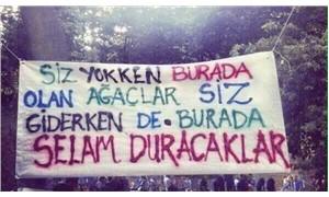 Sami Elvan: Vali Mutlu asıl suçlarından da yargılanmalı!