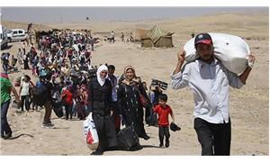 1093 göçmen iade edildi, 5024 Suriyeli AB ülkelerine gönderildi