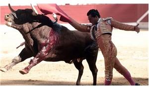 Boğa kendisini öldürmeye çalışan matadoru öldürdü