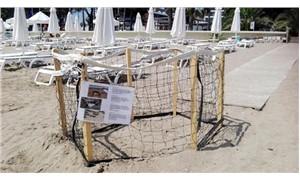 Side plajındaki caretta caretta yuvası korumaya alındı