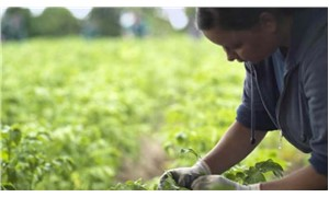 """Stefan Hipp: """"Organik tarım felsefemiz haline geldi"""""""