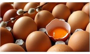 Zehirli yumurtalar yayılıyor