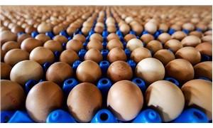 Yumurta krizi mayoneze de sıçrayabilir