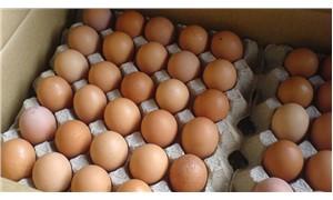 Bakanlıktan 'zehirli yumurta' açıklaması