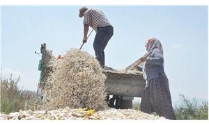 Türkiye 'gıda egemenliğini' kime karşı, nasıl kaybetti?
