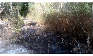 Bahçesindeki otları yakarken yanarak hayatını kaybetti
