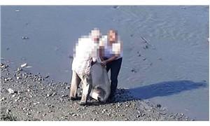 Sakarya Nehri kenarında kalaşnikof bulundu
