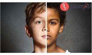 Cilt rengi ırkla ilişkili değil