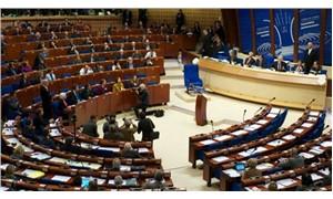 Ankara, Avrupa Konseyi bütçesine katkısını düşürüyor