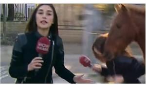 Show TV muhabirine at saldırdı!