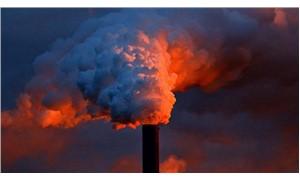 Petrol devleri riskleri bile bile çevreyi kirletti