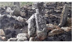 Tarihi mezarlığı yakarak temizlemeye çalıştılar