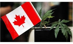 Kanada marihuanayı yasallaştıracak tasarıyı senatoya sundu