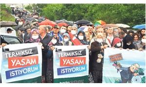 """""""Zeytin yetişmiyorsa devlet neden teşvik ediyor?"""""""