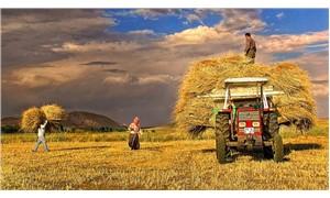 İşsizliğe çare yine tarımda