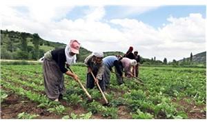 'Tarımın yükünü kadınlar çekiyor'