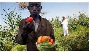 Doğa ve iklim dostu gıda dünyayı besler
