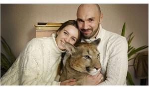 Hasta pumayı sahiplenip evcilleştirdiler